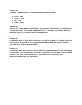 Punnett Square Practice Problems for genetics