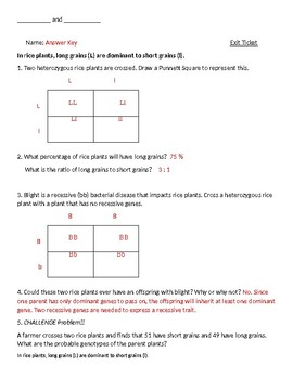 Punnett Square Practice: Vocabulary, Problem-Solving, and More!