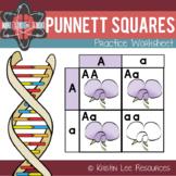 Punnett Squares Practice Worksheet