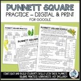 Punnett Square Practice Worksheets - Digital or Print