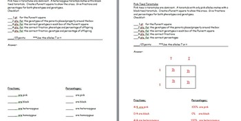 Punnett Square Practice Worksheets with Answer... by The Science ...