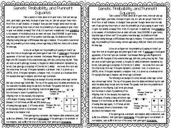 Punnett Square Reading Comprehension Interactive Notebook