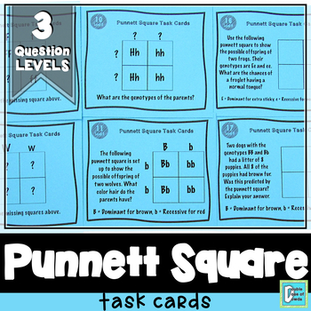 Punnett Square Task Cards