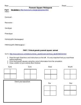 Punnett Square webquest practice, a good reinforcement or review.