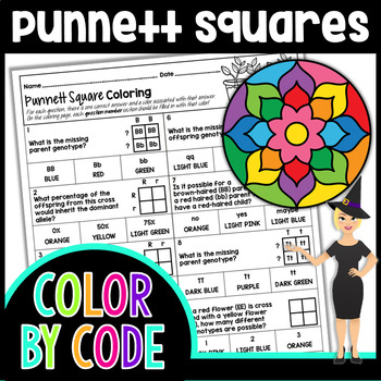 Punnett Squares Color by Number or Quiz