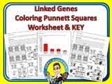 Punnett Squares Coloring Worksheet - Linked Genes
