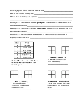 Punnett Squares: Dihybrid Crosses Student Notes Page