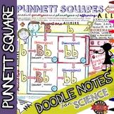 Punnett Squares Doodle Notes