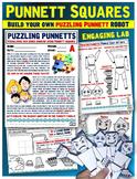 Punnett Squares: Interactive Lab