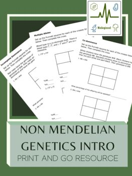 Non Mendelian Genetics Worksheets & Teaching Resources | TpT