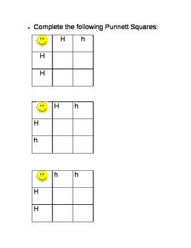 Punnett Squares Made Easy