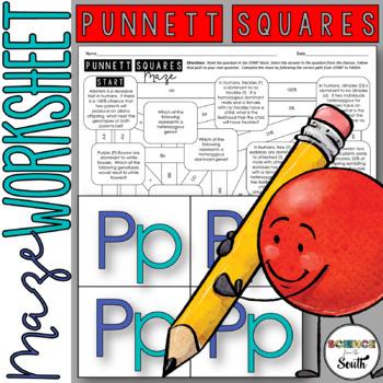 Punnett Squares Maze for Review or Assessment