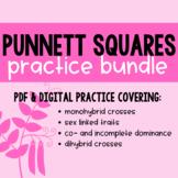 Punnett Squares - Practice Bundle