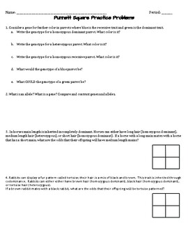Punnett Squares Practice Problems