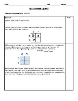 Punnett Squares Quiz (NGSS-Aligned)