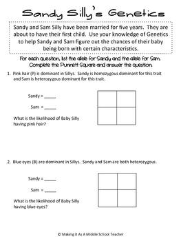 Punnett Squares ~ Sandy Silly's Genetics