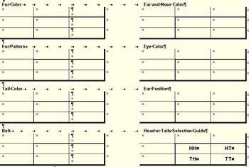 Punnett Squares and Making Chromosomes