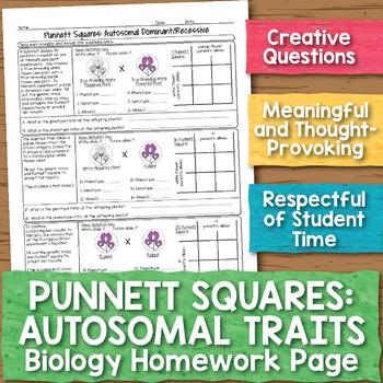Punnett Squares for Autosomal Traits Biology Homework Worksheet
