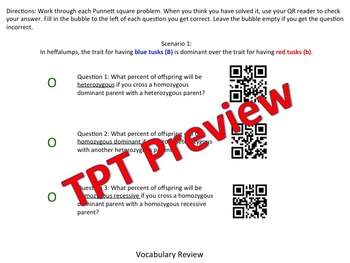 Punnett Squares with QR Codes Genetics