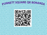 Punnett Squares with QR Codes Genetics