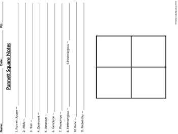 Punnett square tutorial guided notes organizer