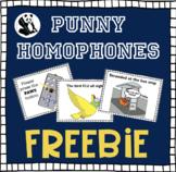 Punny Homophones FREEBIE