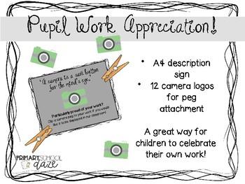 Pupil Work Appreciation