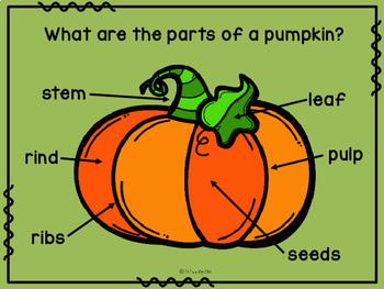 Pumpkin Unit