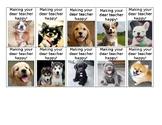 Puppy Brag Tags