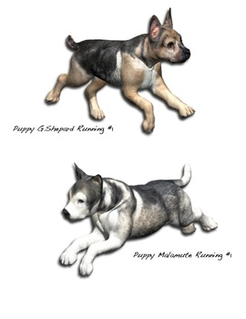 Puppy Pack #1