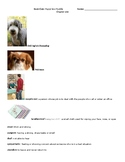 Puppy in a Puddle Book Club chapter resources vocabulary/c