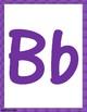 FREEBIE!!! Purple Alphabet Letters & Nameplates