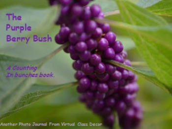 eBooks - Purple Berries Counting Book