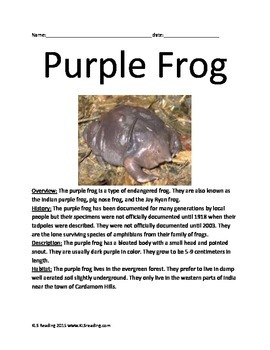 Purple Frog - Endangered Animal Informational Article Facts Questions Vocab