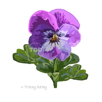 Purple Pansy Painting - pansy clip art, pansy Printable Tracey Gurley Designs