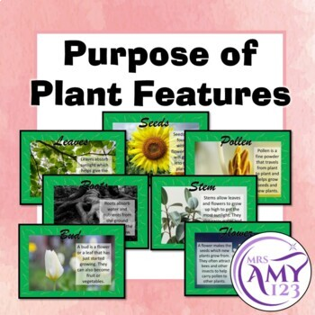 Purpose of Plant Features