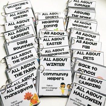 Push-in Speech and Language Activities {themes for all year}