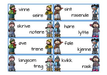 Puslekort Synonymer (BM)