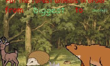 Put FOREST/WOODLAND ANIMALS in Order by SIZE