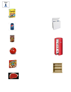 Putting Away the Groceries - Sorting/Matching Activity