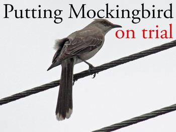 Putting To Kill a Mockingbird on Trial