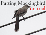 Putting To Kill a Mockingbird on Trial