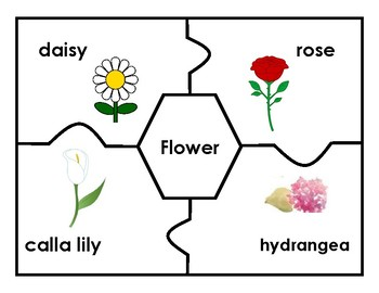 Puzzles: Match the Category