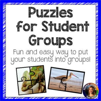 Puzzles for Student Groups