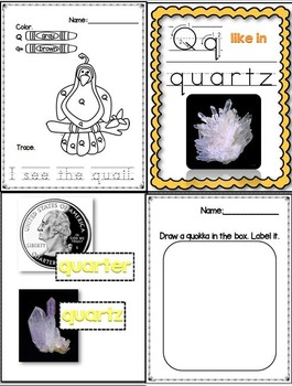 Q Like In Quail (Letter Q Unit Using Real Photos!)