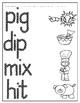 Q-Tip Painting or Push Pin Popping CVC Word Center