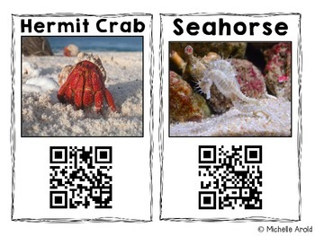 QR Code Animal Research: Ocean Edition