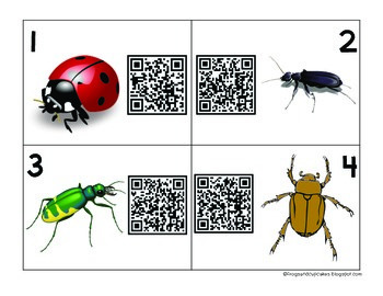 QR Code Investigation: Insects