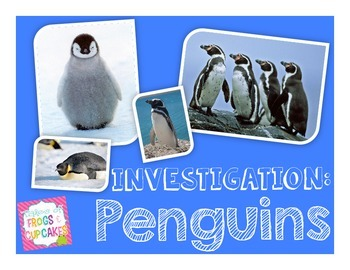 QR Code Investigation: Penguins