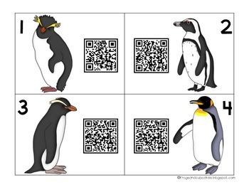 QR Code Investigation: Penguins